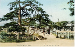 Fukagawa951c