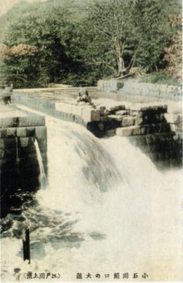 Koishikawa951c