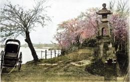 Ushijima356c