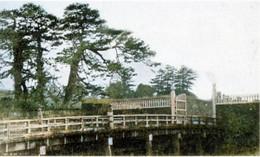 Takebashi655c