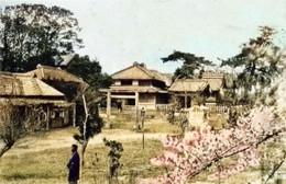 Wakamiya999c