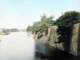 Edo966c