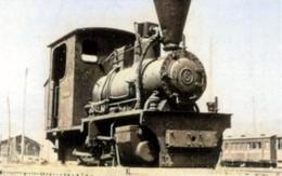 Kusakaru929c