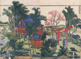 Matsuchi751b